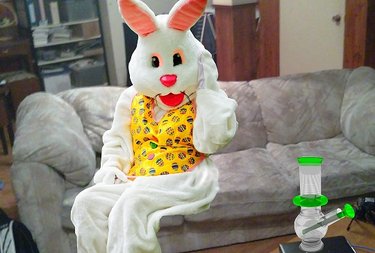 Easter Bunny Still Way Too High to go to Work Today